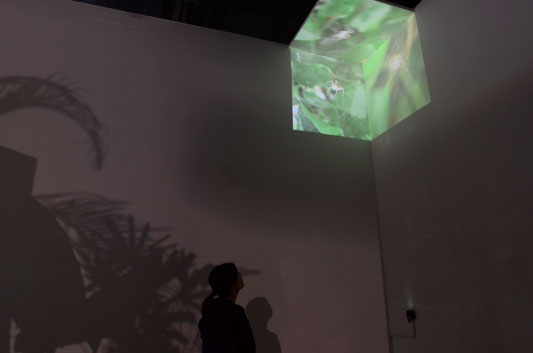 Eike: Cube, Nam June Paik Center, Korea, 2010